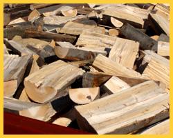 Palivové dřevo studénka